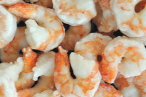 Black Tiger Cooked Peeled Deveined Tail Off I.Q.F Shrimps